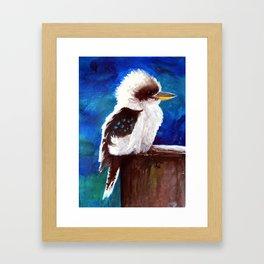 Kookaburra (aka Laughing Jackass!) Framed Art Print