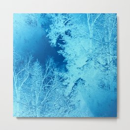 Icy Winter..... Metal Print