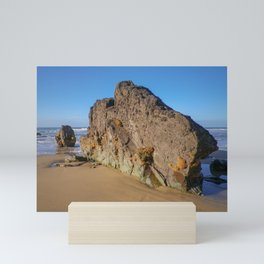 ROCK WITH HONEYCOMB WORM COLONY SANDYMOUTH BEACH CORNWALL Mini Art Print