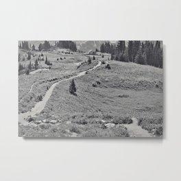 Trail B&W Metal Print