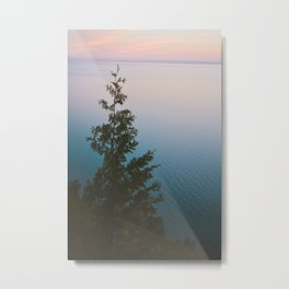 Poetry of a Summer Evening Metal Print