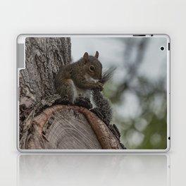 Squirrel Tail Laptop & iPad Skin