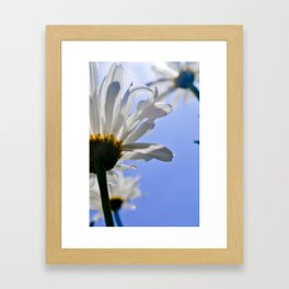 J. VanDam Photography Framed Art Print