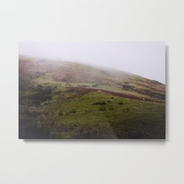 Sheep in Wales...who woulda thunk it? Metal Print