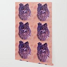 The Brindle Pomeranian Wallpaper