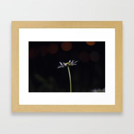 Flowers by night #3 Framed Art Print