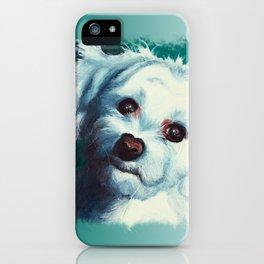 Maltese dog - Pelusa - by LiliFlore iPhone Case