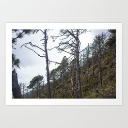 The Hills of Antigua Art Print