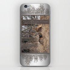 White-Tailed Deer iPhone & iPod Skin
