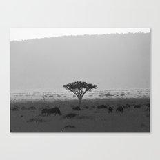 Migration in the Maasai Mara Canvas Print