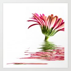 Pink Gerbera Flood 3 Art Print