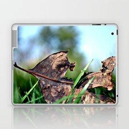 spring sprang early Laptop & iPad Skin