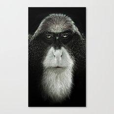 Debrazza's Monkey  Canvas Print