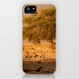 NAMIBIA ... when the sun goes down iPhone Case