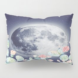 Interval World Pillow Sham
