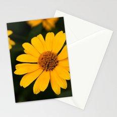 Sunny Daisy Stationery Cards