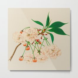 Fugen's Elephant Cherry Blossoms Metal Print
