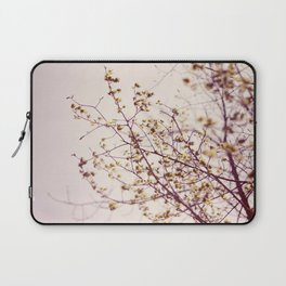 the sun is in the sky  Laptop Sleeve