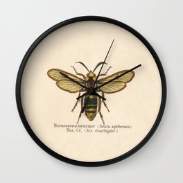 Antique Sesia Apiformis Moth Lithograph Wall Clock