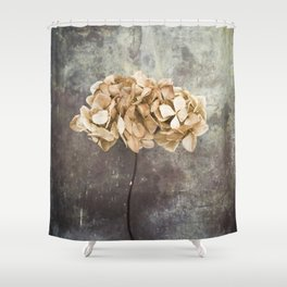 Dried Hydrangea Shower Curtain