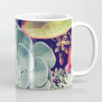 succulent Mugs featuring Succulent by Holli Dunn Photography