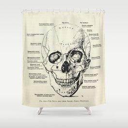 Vintage Anatomy Skull  Shower Curtain