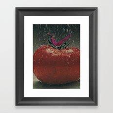 tomato storm Framed Art Print