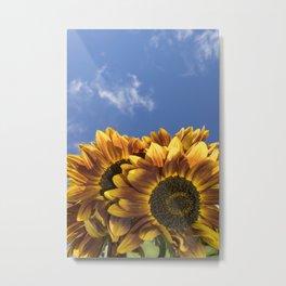 Sunflowers-160902-4 Metal Print