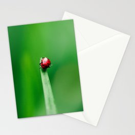 Balancing Acts Stationery Cards