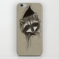 raccoon iPhone & iPod Skins featuring Raccoon by Daydreamer
