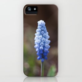Ombre iPhone Case