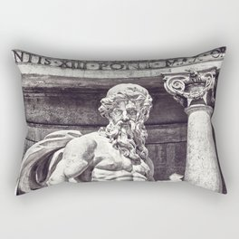 TRITON Rectangular Pillow