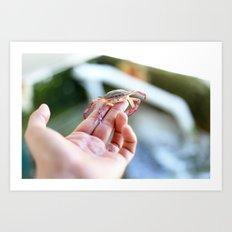 Pass Crab Art Print