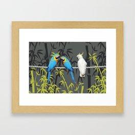 Kakadu - Macbambooaw Bambus Rope Jungle Framed Art Print