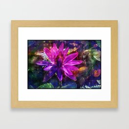 Water Lily 1 Framed Art Print