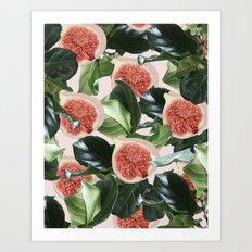 Figs & Leaves #society6 #decor #buyart Art Print