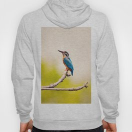 Kingfisher on the Branch Hoody