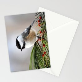Pine Chickadee Stationery Cards