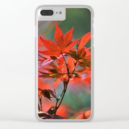 Scarlet Japanese Maple Leaves Clear iPhone Case