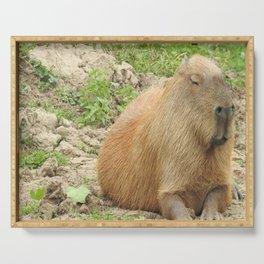 Capybara Serving Tray