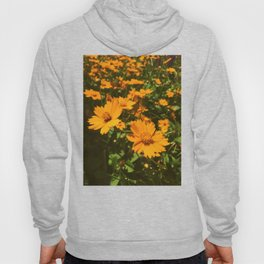 Sunshine Sprouts Hoody