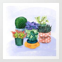 Succulent Garden House Plants Art Print