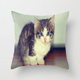 Milo The Kitty Throw Pillow