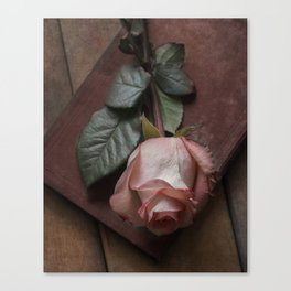 Pink rose and red old book Canvas Print