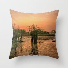 Cardinal Marsh Fog 2 Throw Pillow