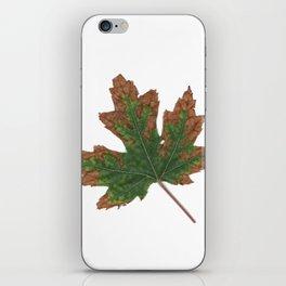 October Specimen iPhone Skin