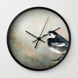 Little Pied Wagtail Wall Clock