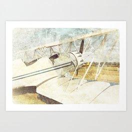Flight of Fancy // Antique Airplanes Art Print