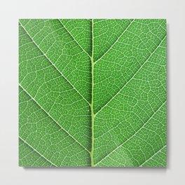 Green Vein Life Metal Print