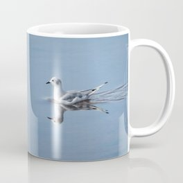 Bonaparte's Gull Coffee Mug